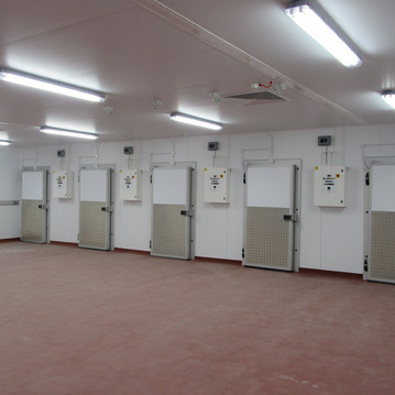 Row of cold room doors